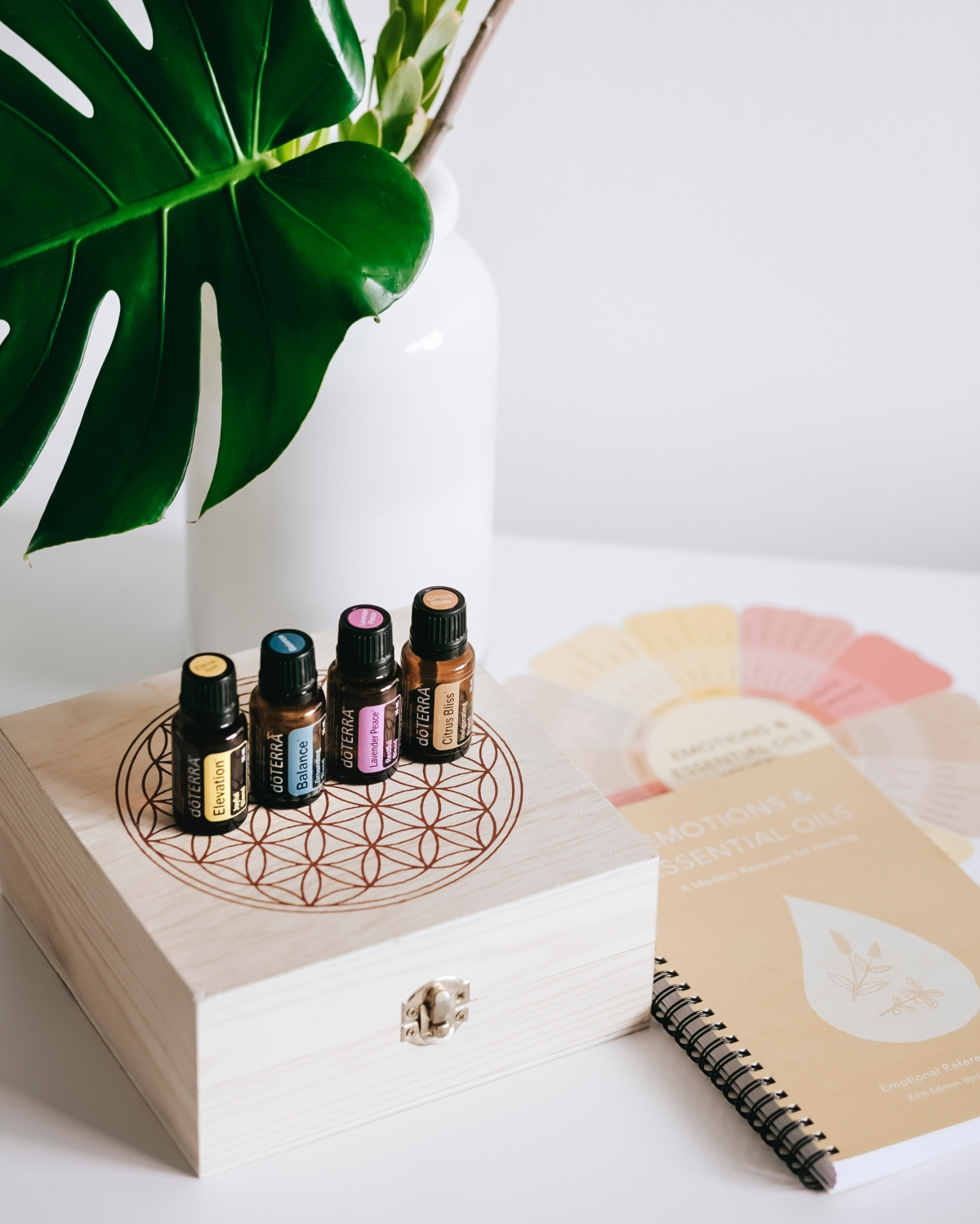 Using Essential Oils for Emotional Support